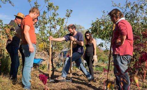 photo des bénévoles de terre & humanisme, travaillant pour la relocalisation territoriale des systèmes alimentaires par l'agroécologie
